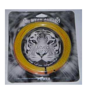 CORDAGE WEST GUT EXOTIC MT22