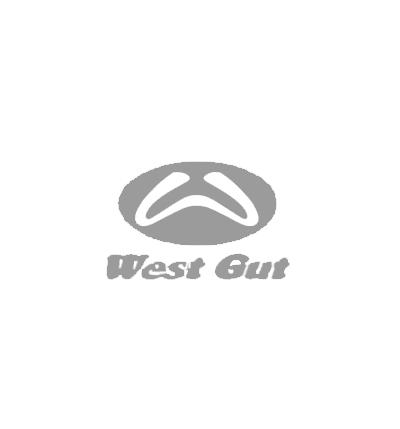 West Gut